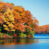 Fall Is For Reflection – Not Depression