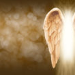 Spirit Guides And Angel Readings